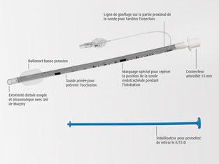 Sonde endotrachéale avec stabilisateur